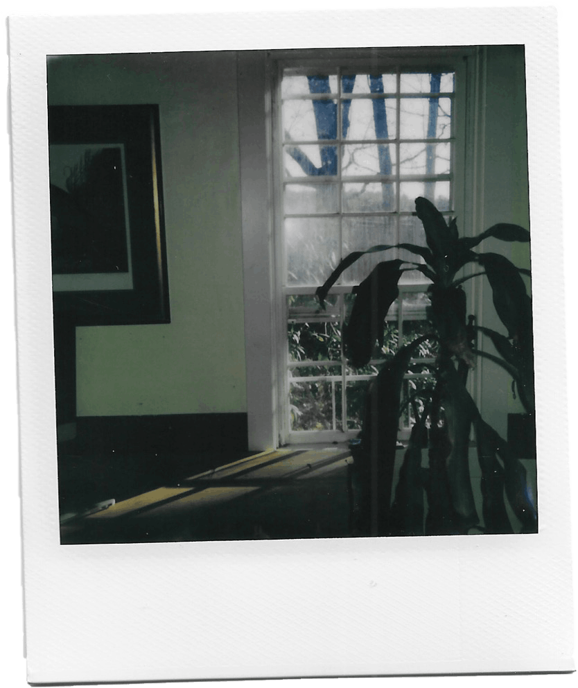 Lonely And Bored Polaroid2