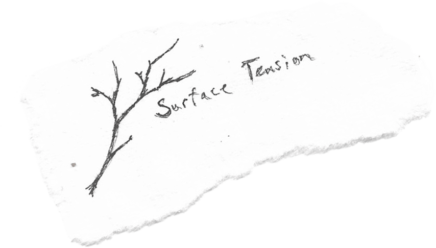 surface tension lyrics title